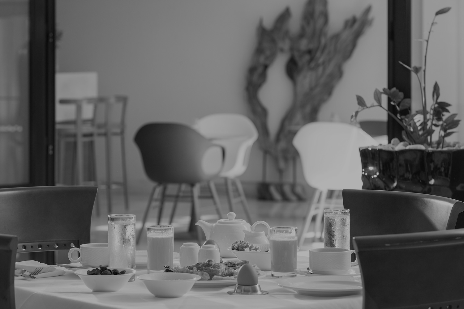 black and white of breakfast