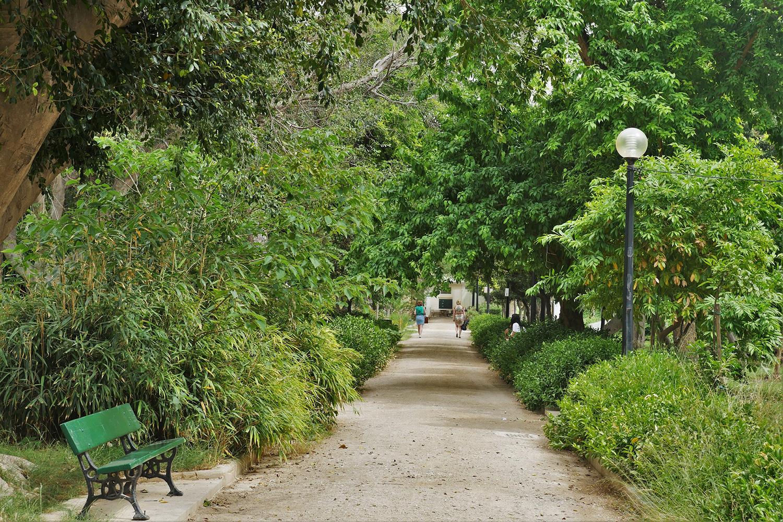 Inside the gardens